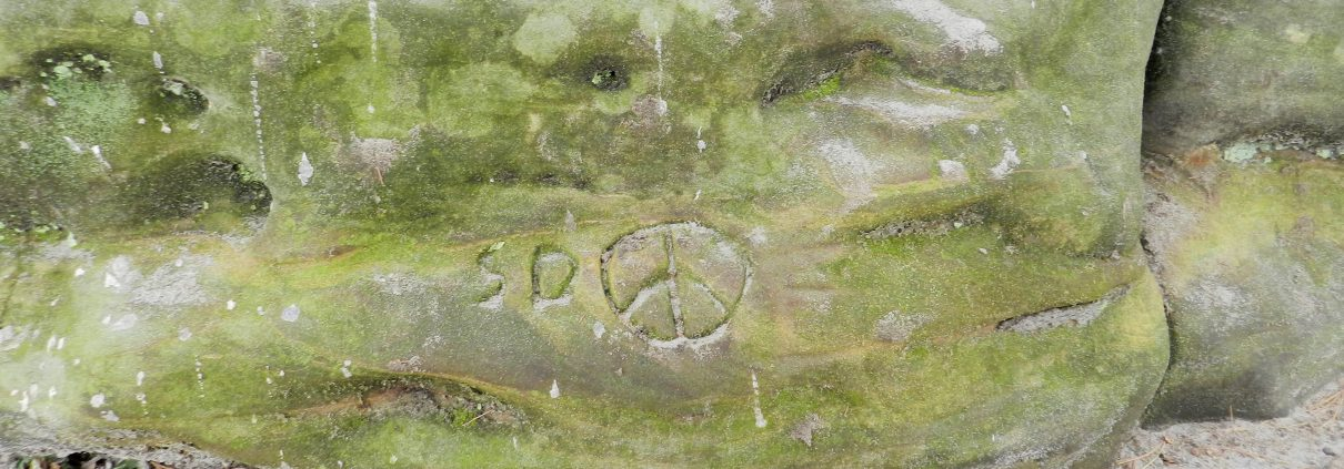 A picture of peace sign